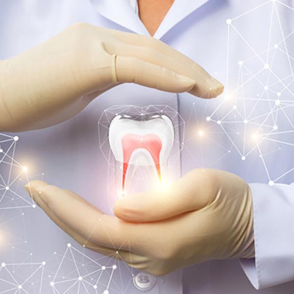 Ganzheitliche Zahnheilkunde
